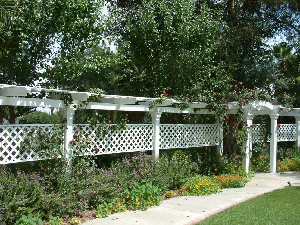 White Arbor and Vine Display